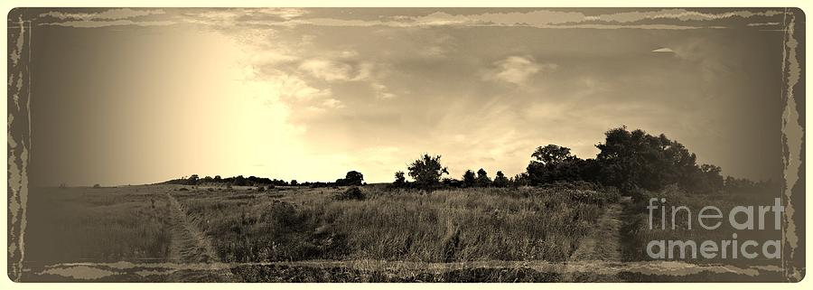 Panoramic Photograph - The Back Pasture by Garren Zanker