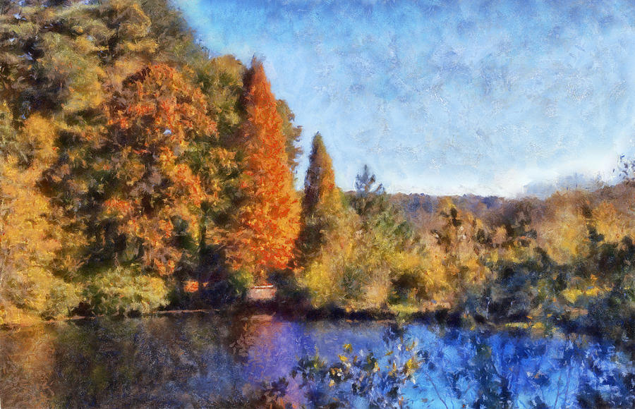 The Bald Cypress Digital Art  - The Bald Cypress Fine Art Print