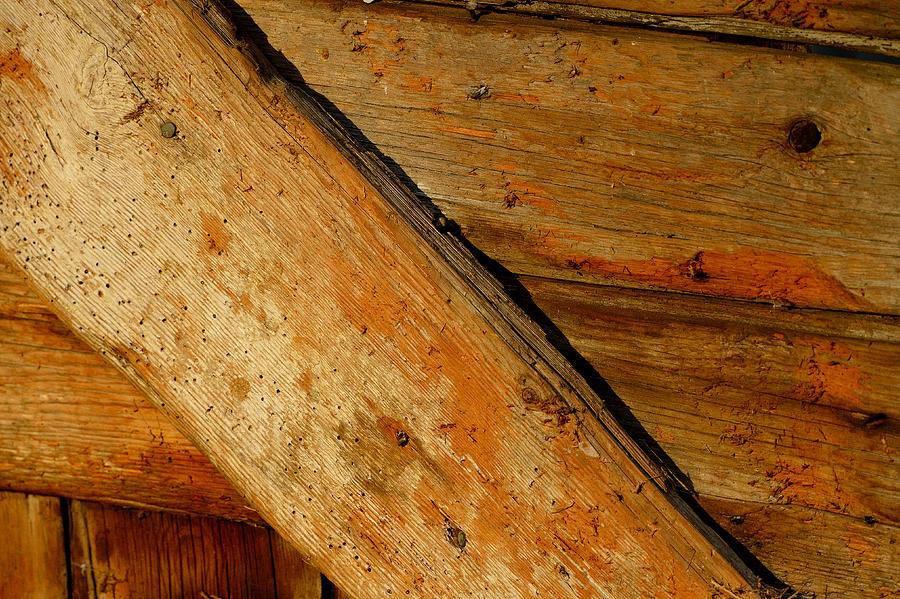The Barn Door Photograph