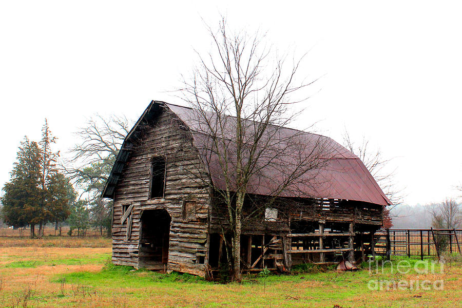 The Barn That Once Was Photograph  - The Barn That Once Was Fine Art Print