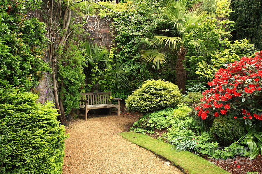 The Beautiful Garden Photograph