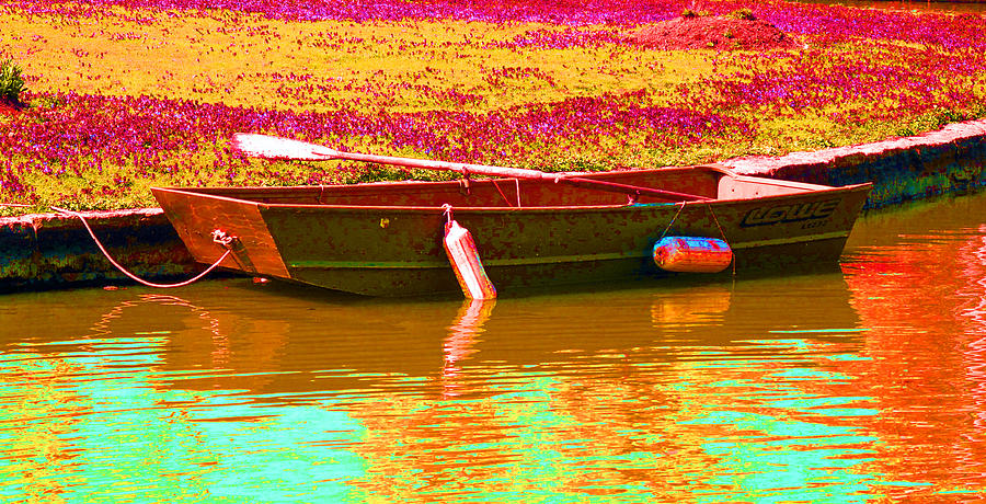 The Boat Photograph  - The Boat Fine Art Print