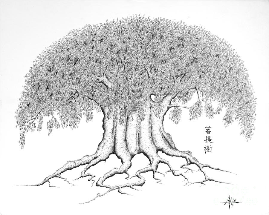 The Boddhi Tree Drawing  - The Boddhi Tree Fine Art Print