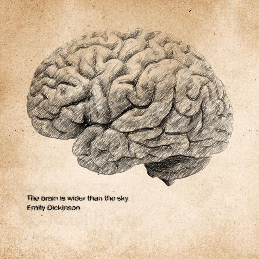 The Brain Is Wider Than The Sky Drawing  - The Brain Is Wider Than The Sky Fine Art Print
