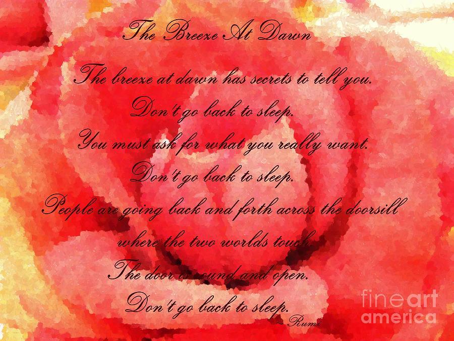 Rumi Don 39 t Go Back Sleep Quotes