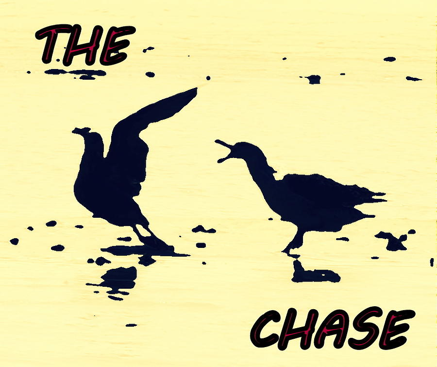 The Chase Photograph
