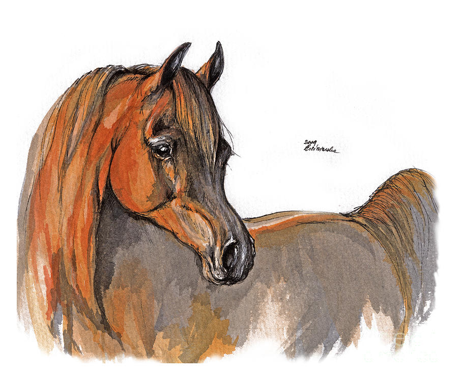 The Chestnut Arabian Horse 2a Painting