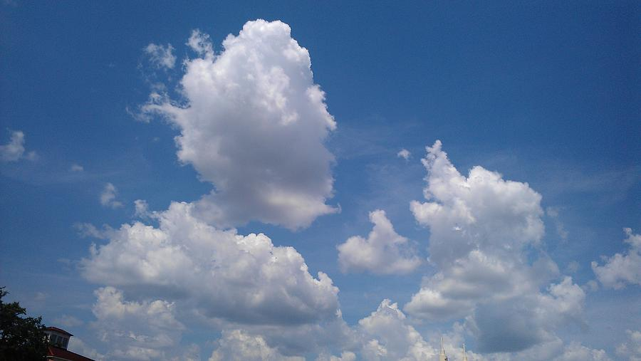 Cloud Photograph - The Cloud Moustachioed Man And His Puppy by Abhilasha Borse