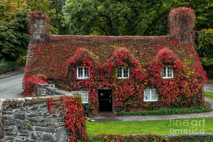 15th Century Photograph - The Cottage by Adrian Evans