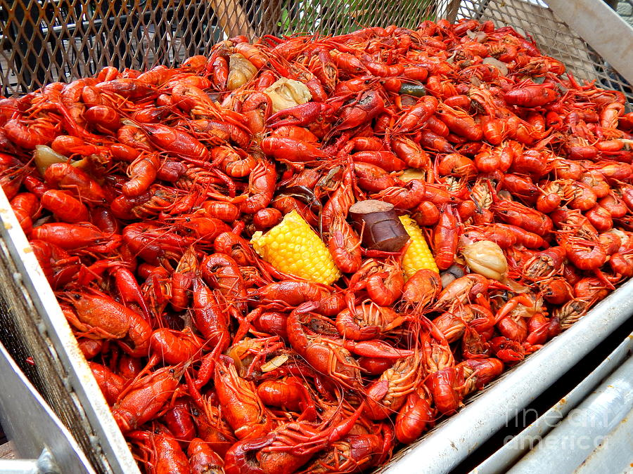 New Orleans Photography Photograph - The Crawfish Boil In New Orleans ...