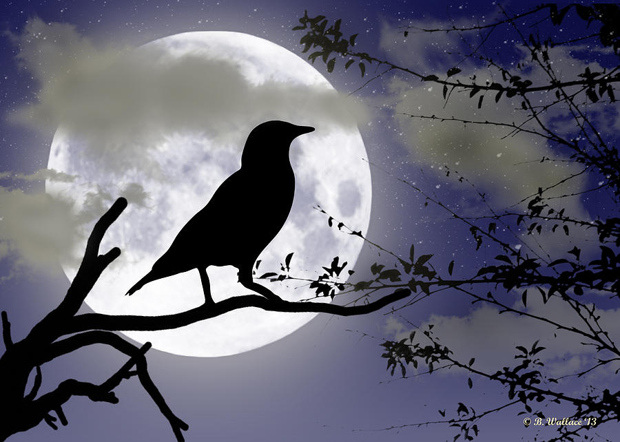 The Crow And Moon Digital Art
