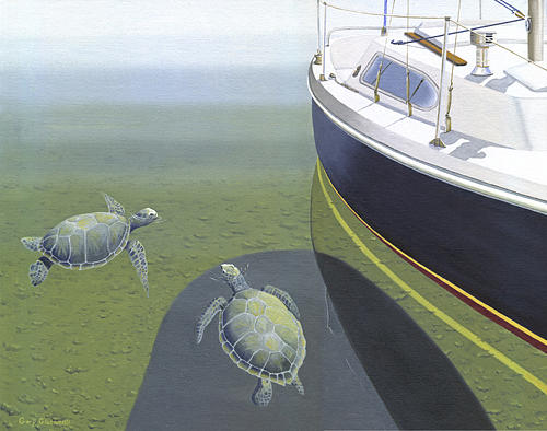 The Curiosity Of Sea Turtles Painting