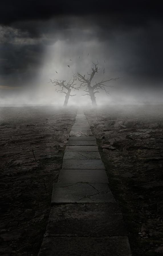 The Dark Land Photograph