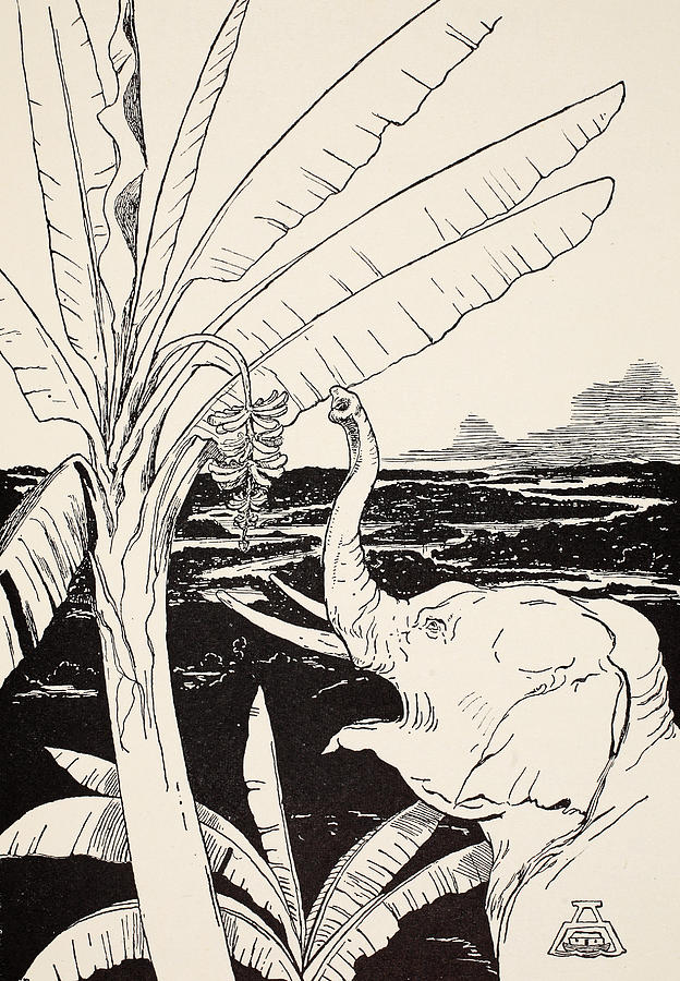 The Elephants Child Going To Pull Bananas Off A Banana-tree Drawing