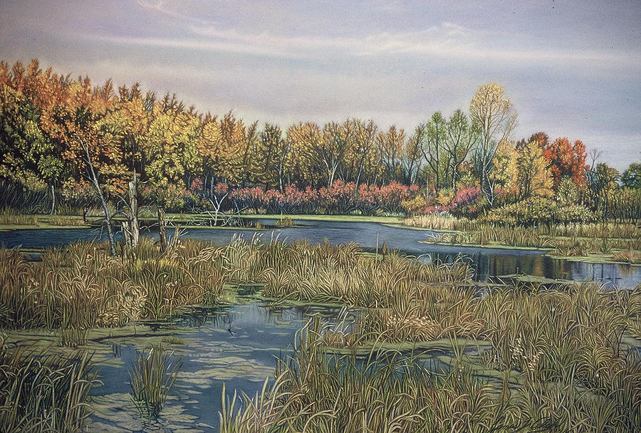 The Endangered Wetlands No. 4 Pastel  - The Endangered Wetlands No. 4 Fine Art Print