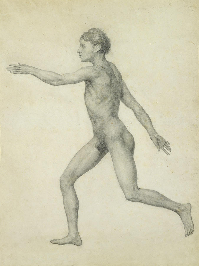 The Entire Human Figure From The Left Lateral View Drawing