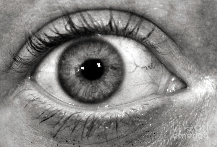 The Eye Photograph
