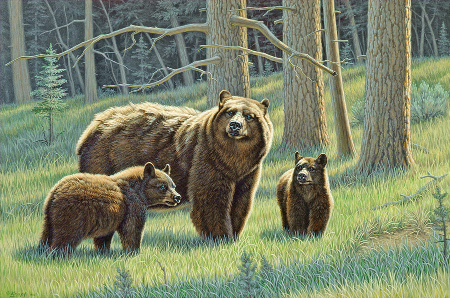 Wildlife Painting - The Family - Black Bears by Paul Krapf