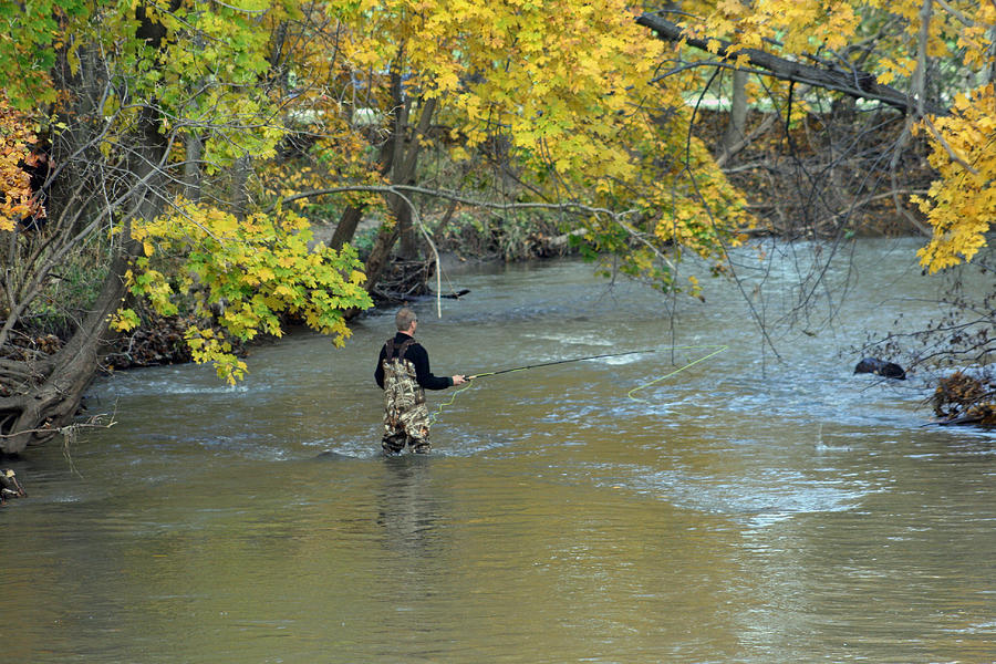 The Fly Fisherman Photograph  - The Fly Fisherman Fine Art Print
