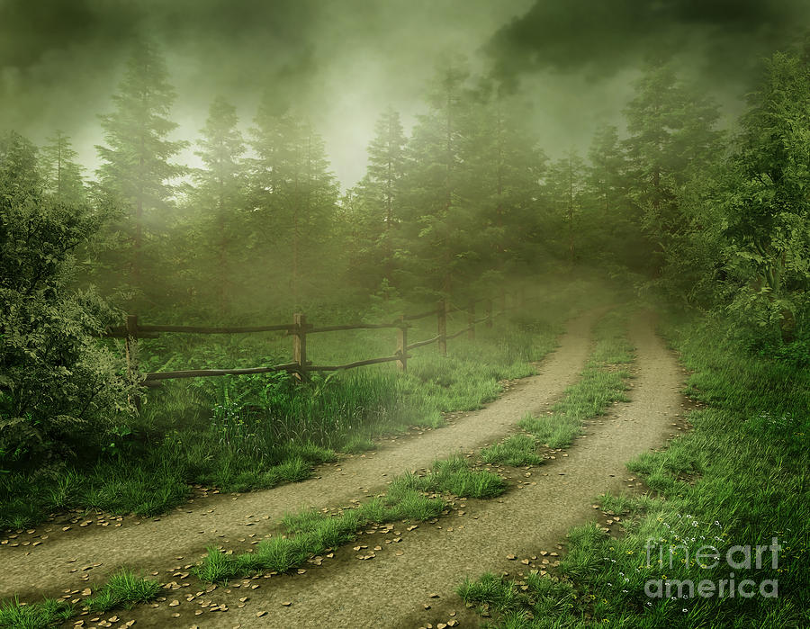 The Foggy Road Photograph  - The Foggy Road Fine Art Print