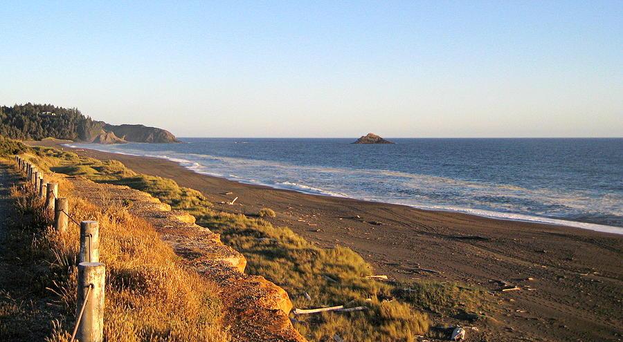 The Golden Coast Photograph