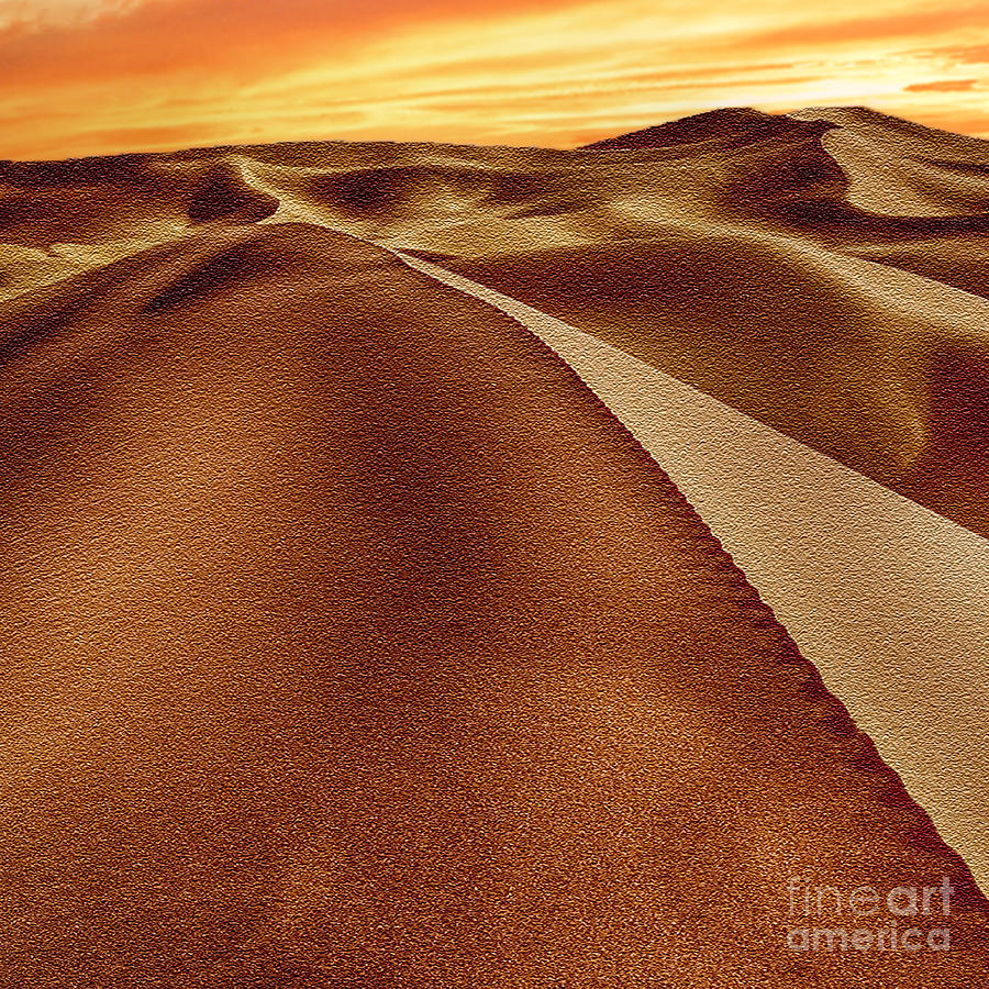 The Golden Hour Anza Borrego Desert Photograph  - The Golden Hour Anza Borrego Desert Fine Art Print
