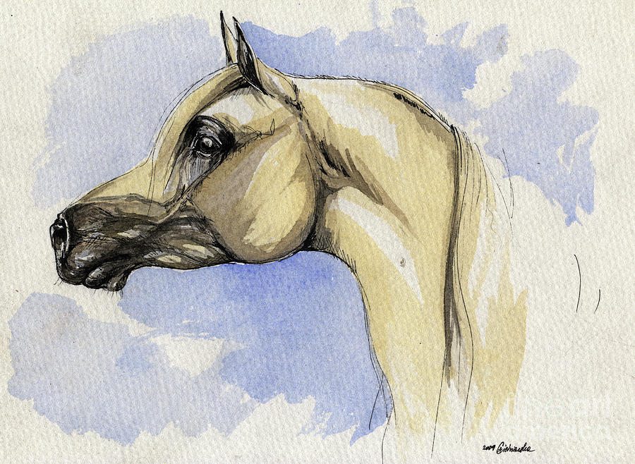 Arabian Painting - The Grey Arabian Horse 12 by Angel  Tarantella