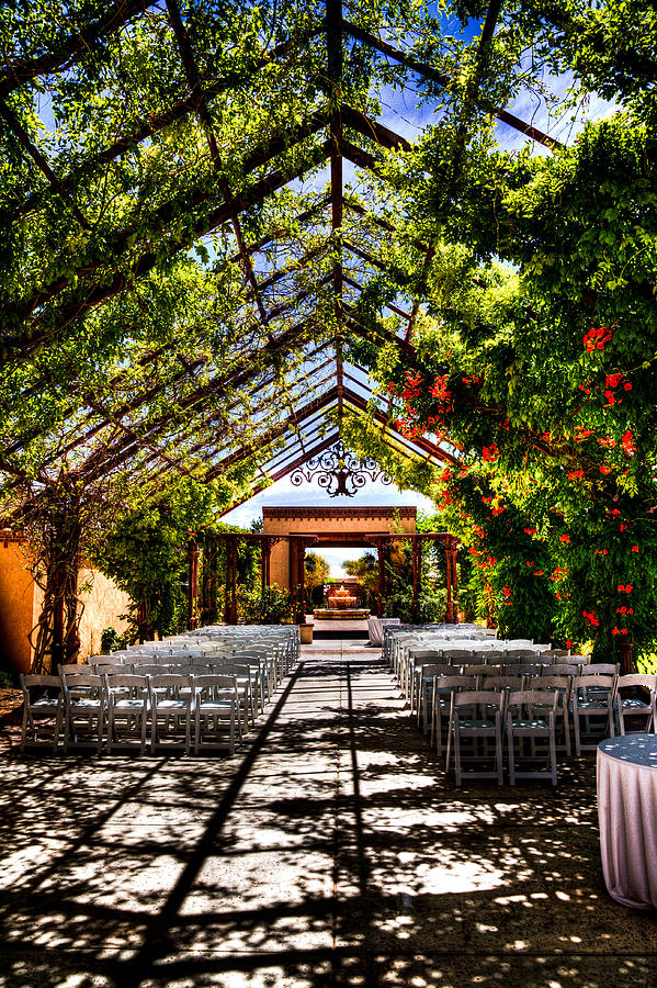 The Hotel Albuquerque Wedding Pavilion Photograph By David