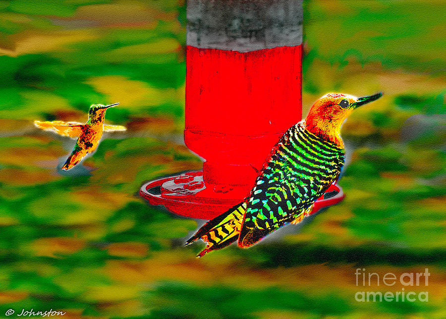 The Humming Bird And Gila Woodpecker Painting