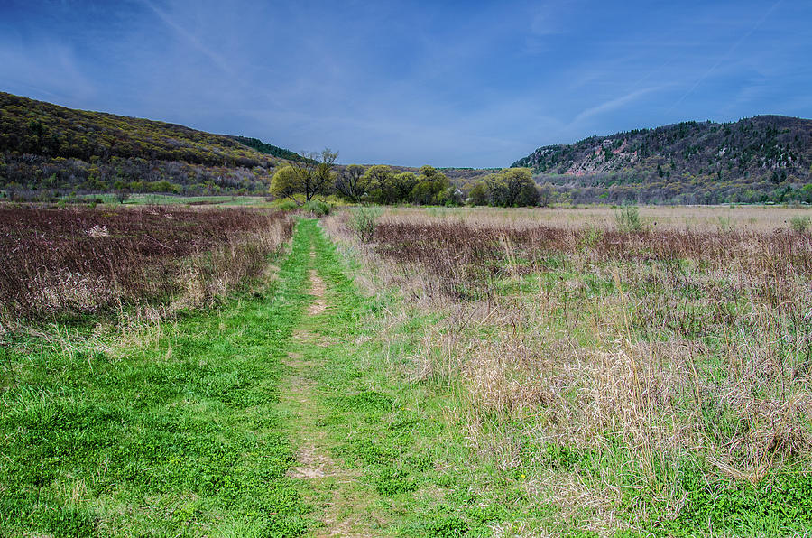 Landscape Canvas Prints Photograph - The Ice Age Trail by Jonah  Anderson