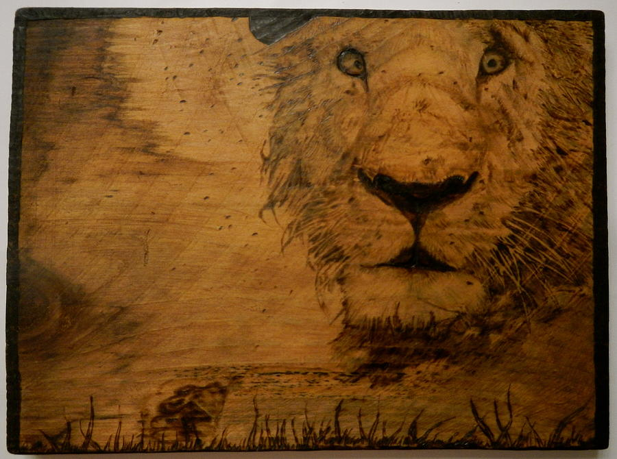 Animal Pyrography - The King by William Waters
