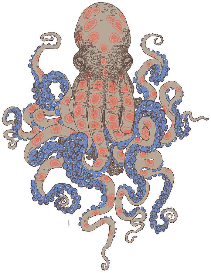 The Kraken by Jasmina J Nakeva