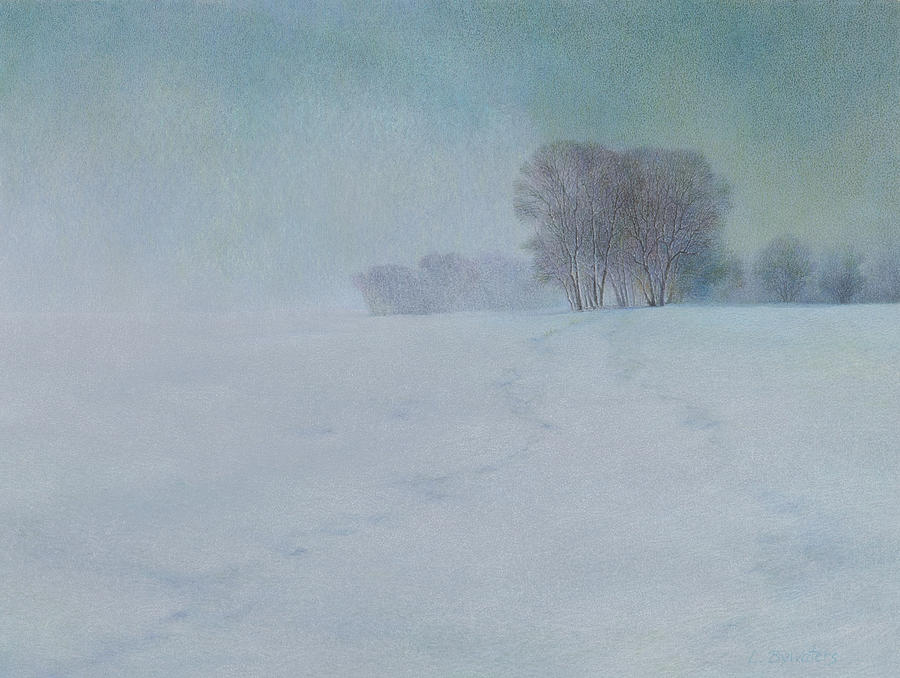 Snow Drawing - The Last Snow by Lynn Bywaters