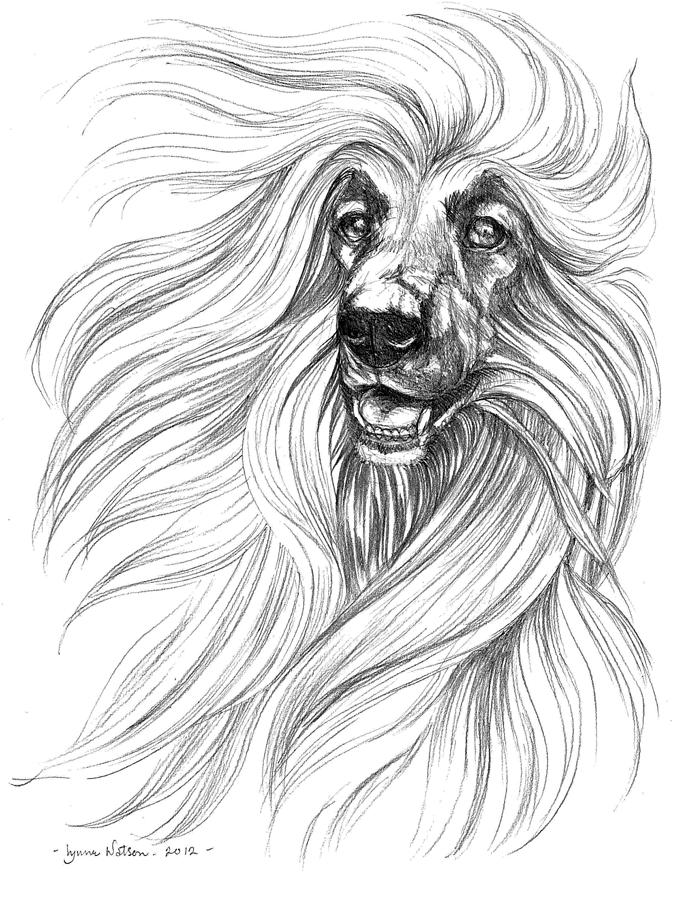 Lion King Drawings In Pencil The lion king drawing - thePencil Drawings Of The Lion King