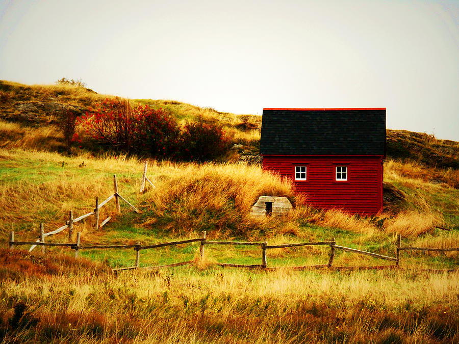 The Little Red House Photograph  - The Little Red House Fine Art Print