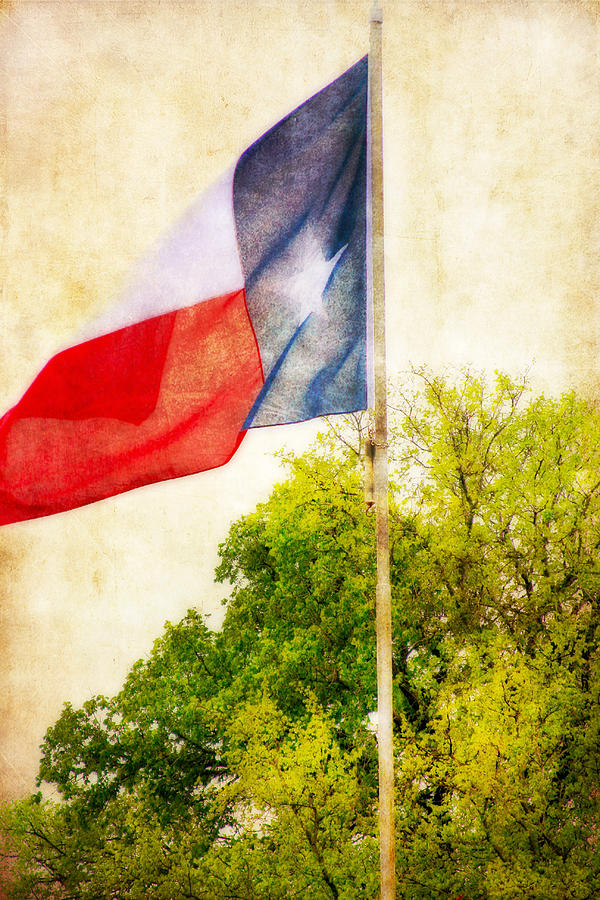 The Lone Star Flag Photograph  - The Lone Star Flag Fine Art Print