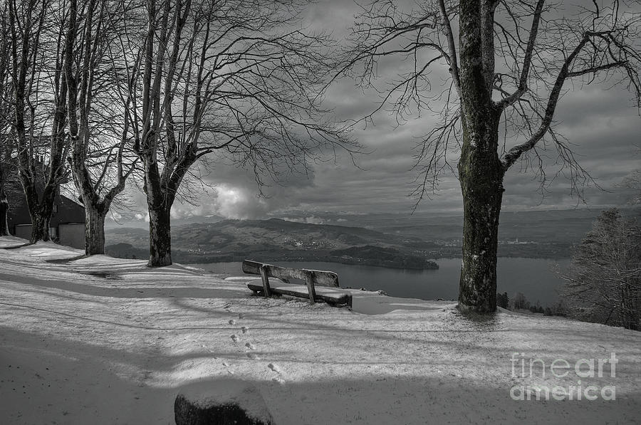 The Lonely Bench Photograph  - The Lonely Bench Fine Art Print