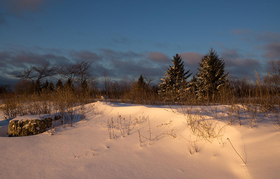 The Morning After The Snowstorm Photograph
