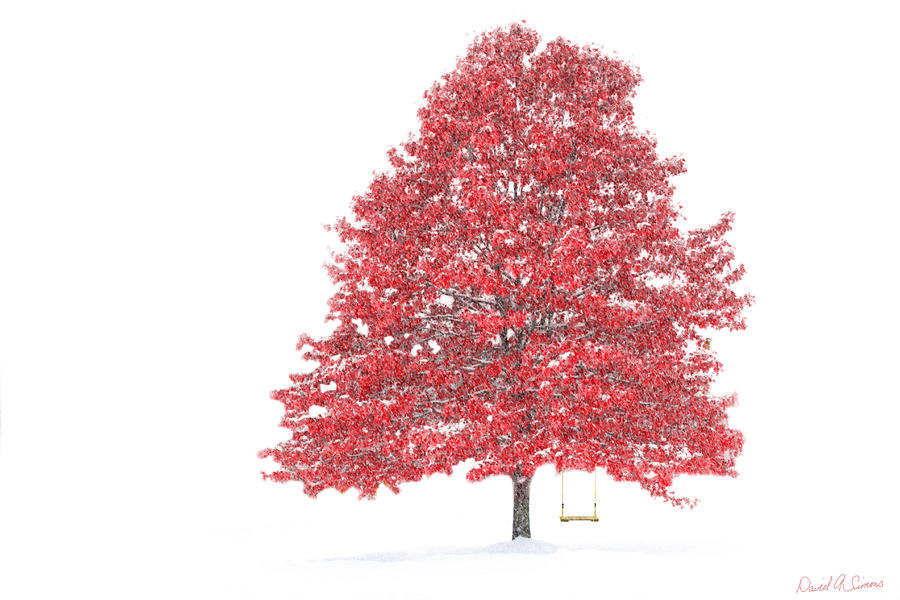 The Oak Tree Digital Art