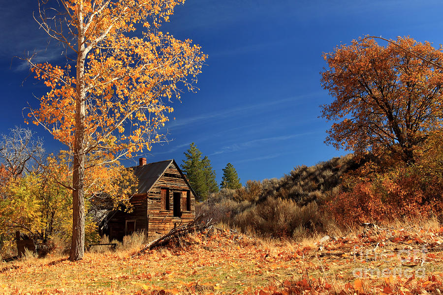 The Old Bunkhouse Landscape Photograph  - The Old Bunkhouse Landscape Fine Art Print
