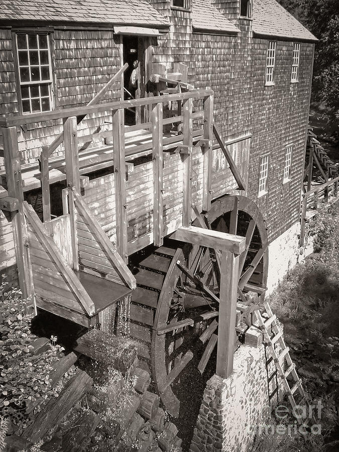 The Old Saw Mill Photograph