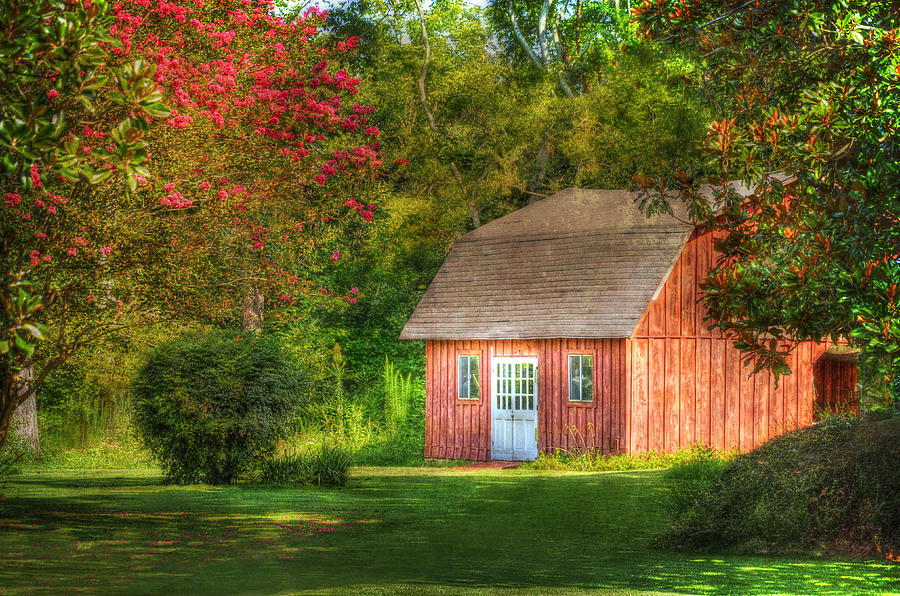 The Old Shed Photograph  - The Old Shed Fine Art Print