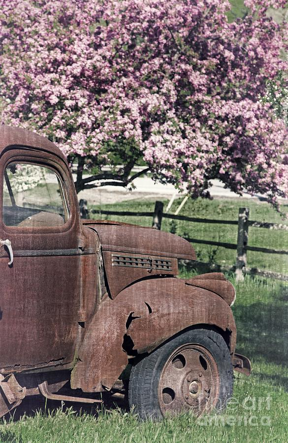 Quechee Photograph - The Old Truck And The Crab Apple by Edward Fielding