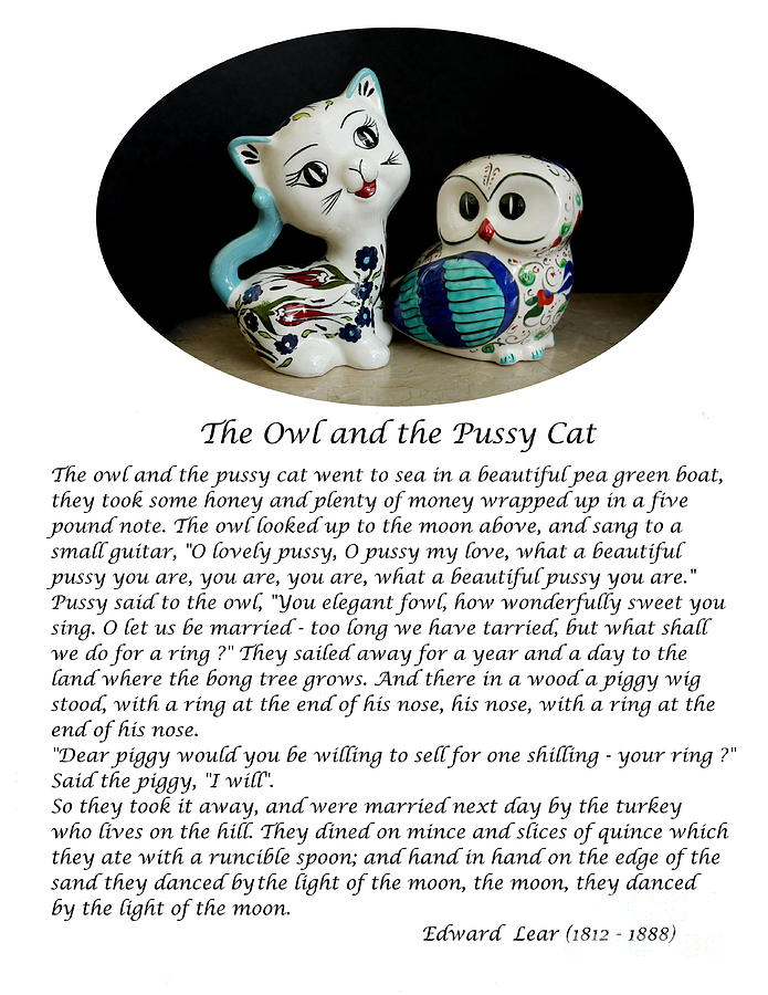 The Owl And The Pussy Cat Photograph - The Owl And The Pussy Cat by John Chatterley