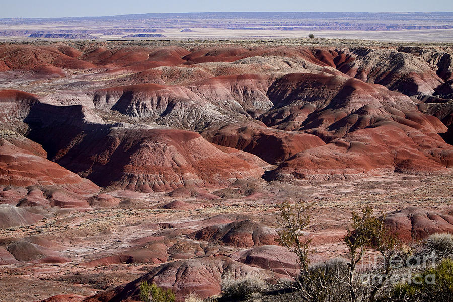 The Painted Desert  8062 Photograph