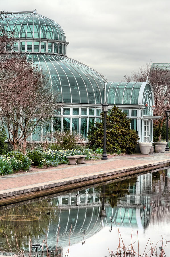 Garden Photograph - The Palm House by JC Findley