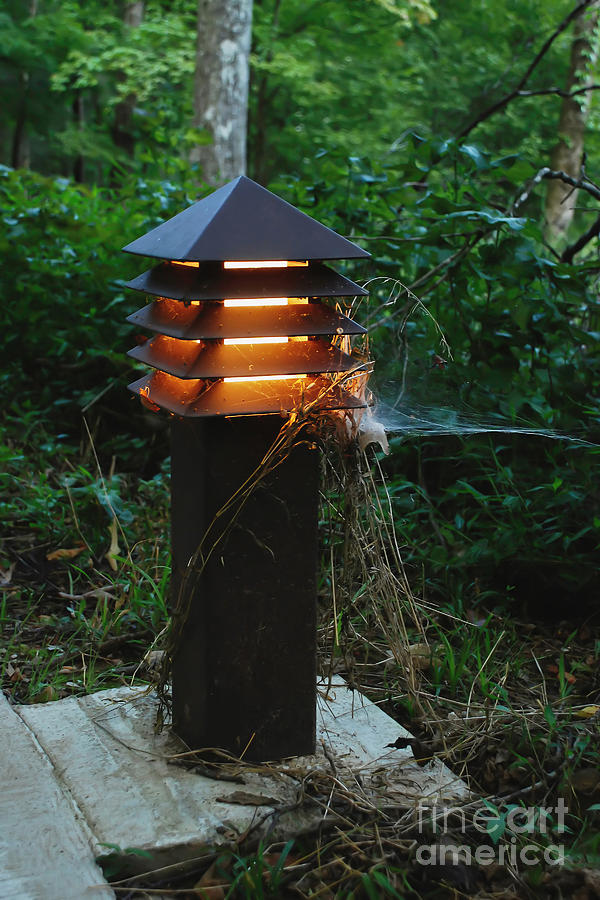 The Park Lantern Photograph