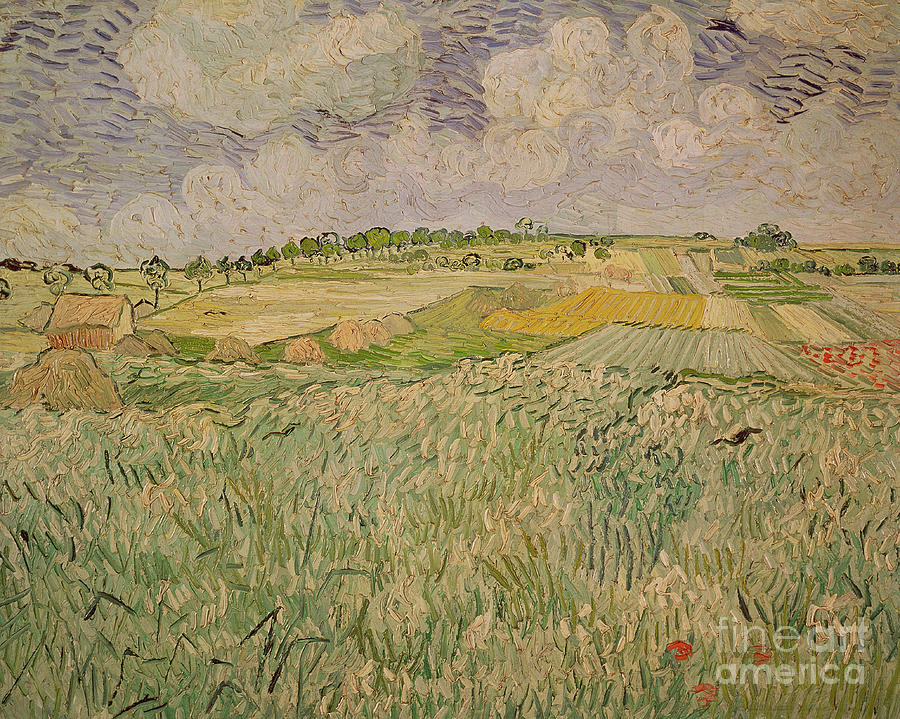 The Plain At Auvers Painting  - The Plain At Auvers Fine Art Print