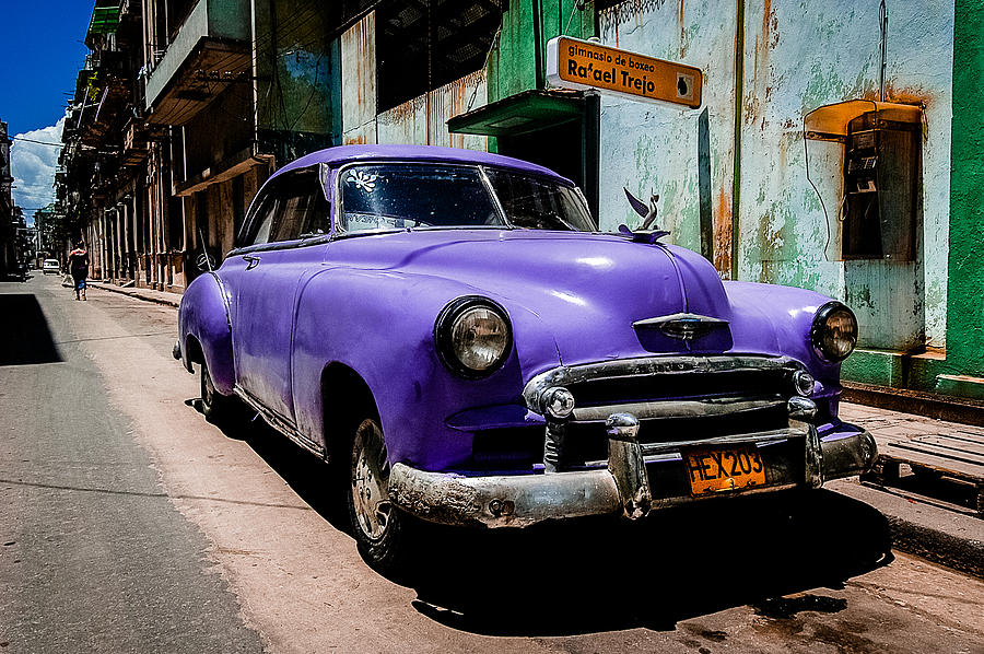Photograph - The Purple Boomer  by Cecil K Brissette