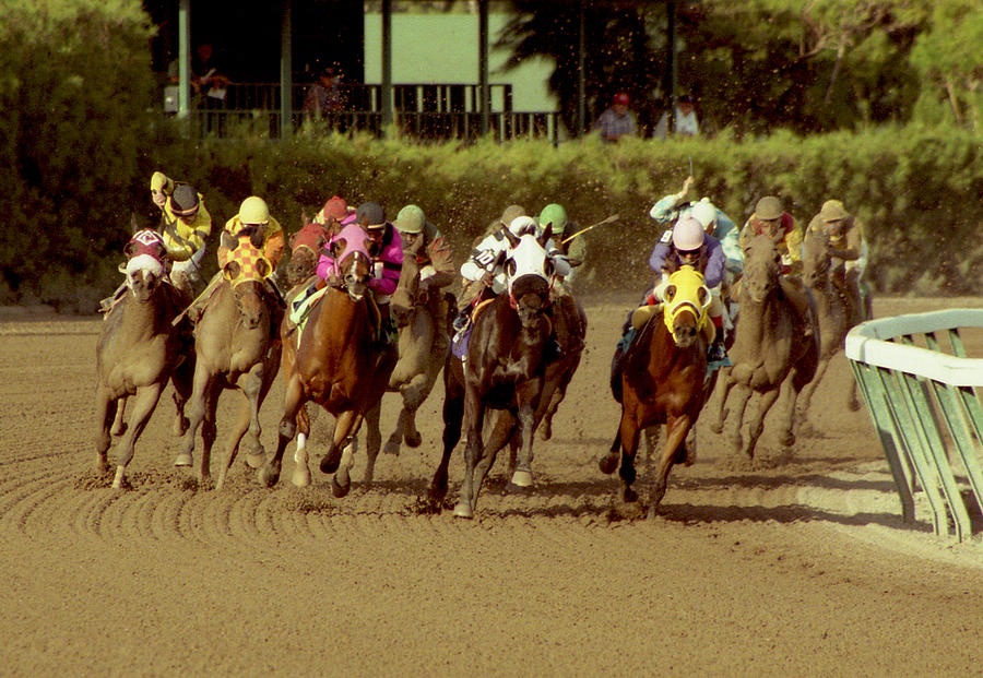 The Race At Gulfsteam Photograph